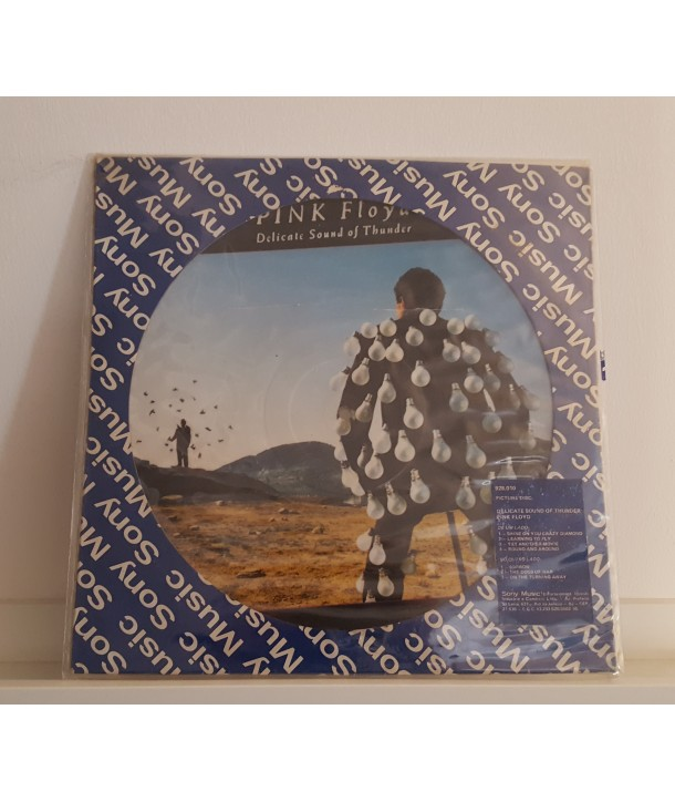 PINK FLOYD - DELICATE SOUND OF THUNDER ( LP PDK )
